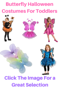 Butterfly halloween Costumes for toddlers