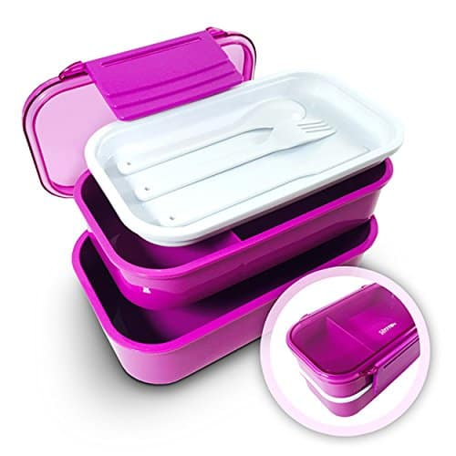 Lunch Boxes - 2 Containers & Matching Silverware