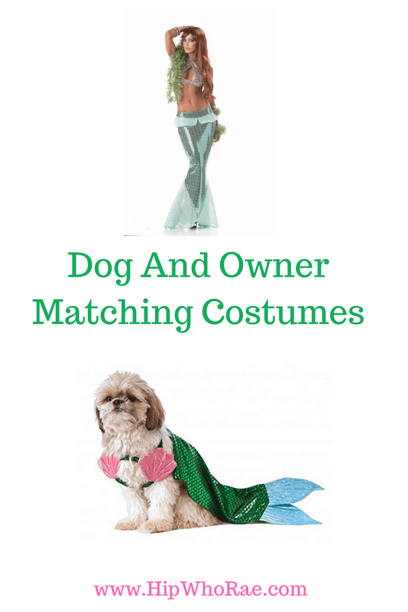 Love These Little Mermaid Costumes For You And Your Pooch