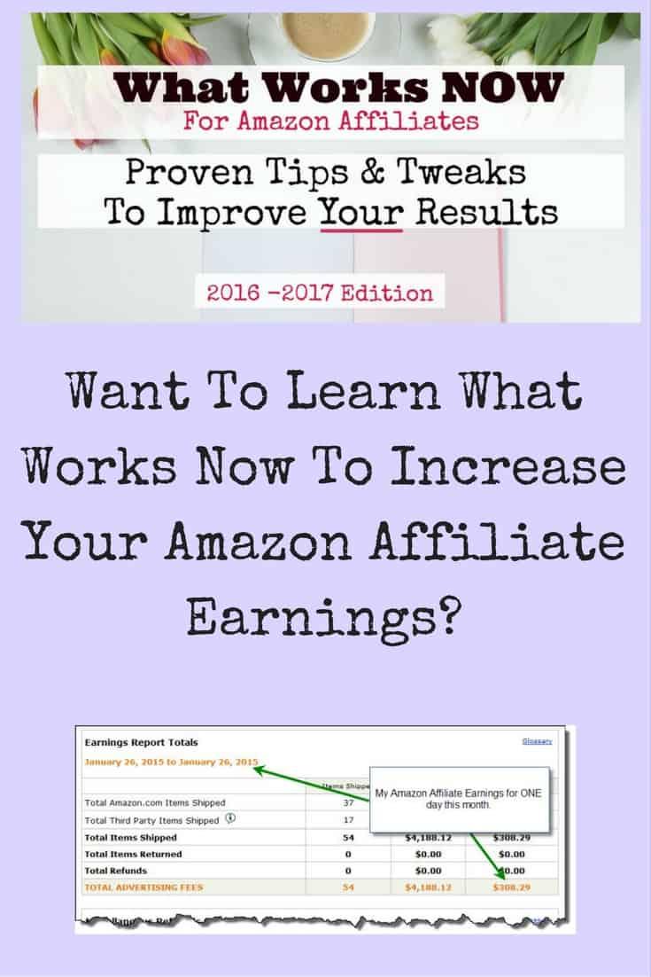 PotPieGirl What Works Now for Amazon Affiliates