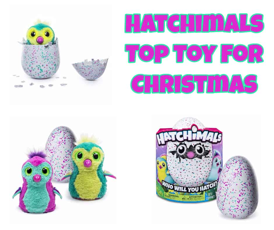 Hatchimals Top Toy For Christmas
