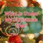 What Is Under My Christmas Tree