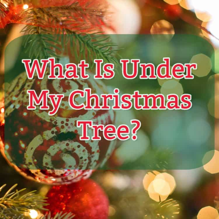 What Is Under My Christmas Tree Hip Hoo Rae
