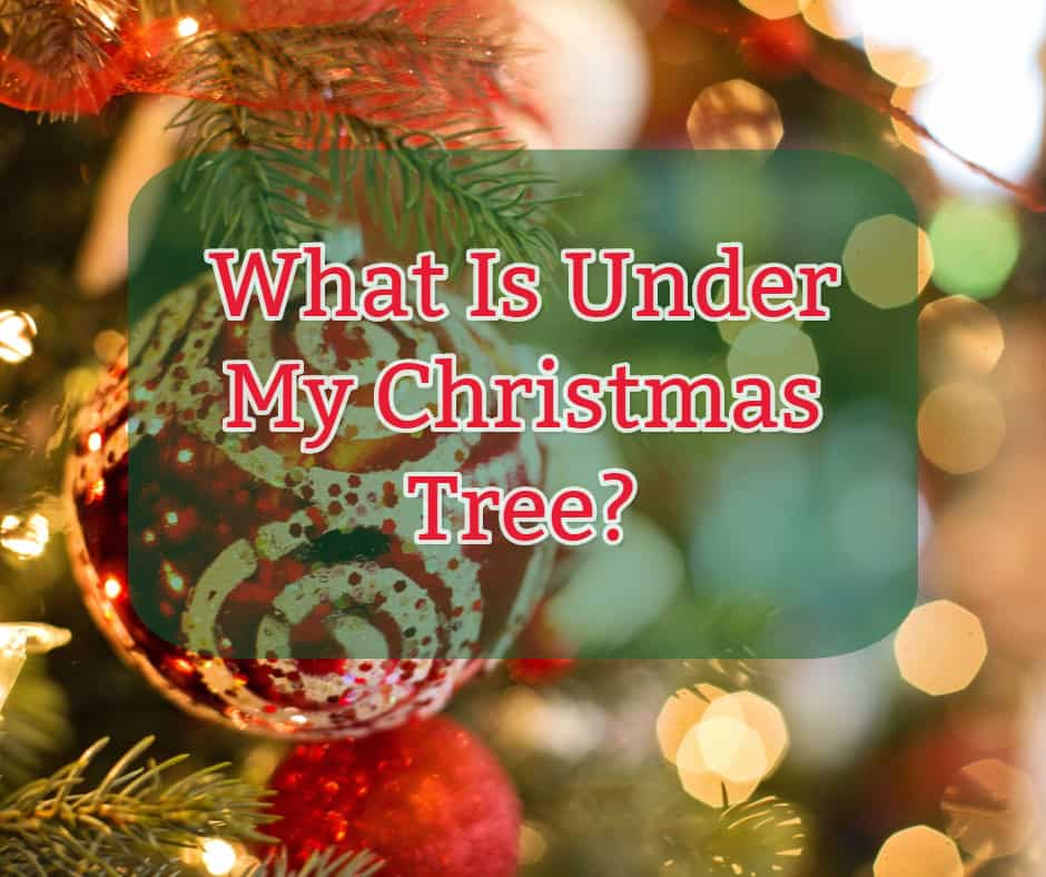 Gift Buying Guide what is under my christmas tree