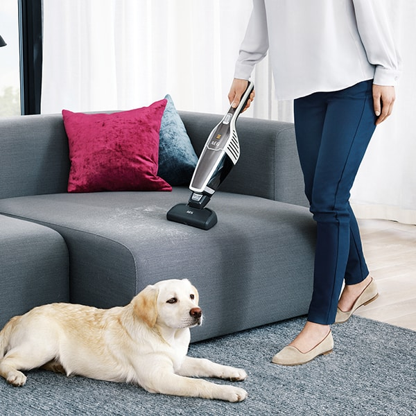 The Amount Of Time You Should Spend On Vacuuming Your Sofa Depends Pet And How Much They Shed However More Often Better