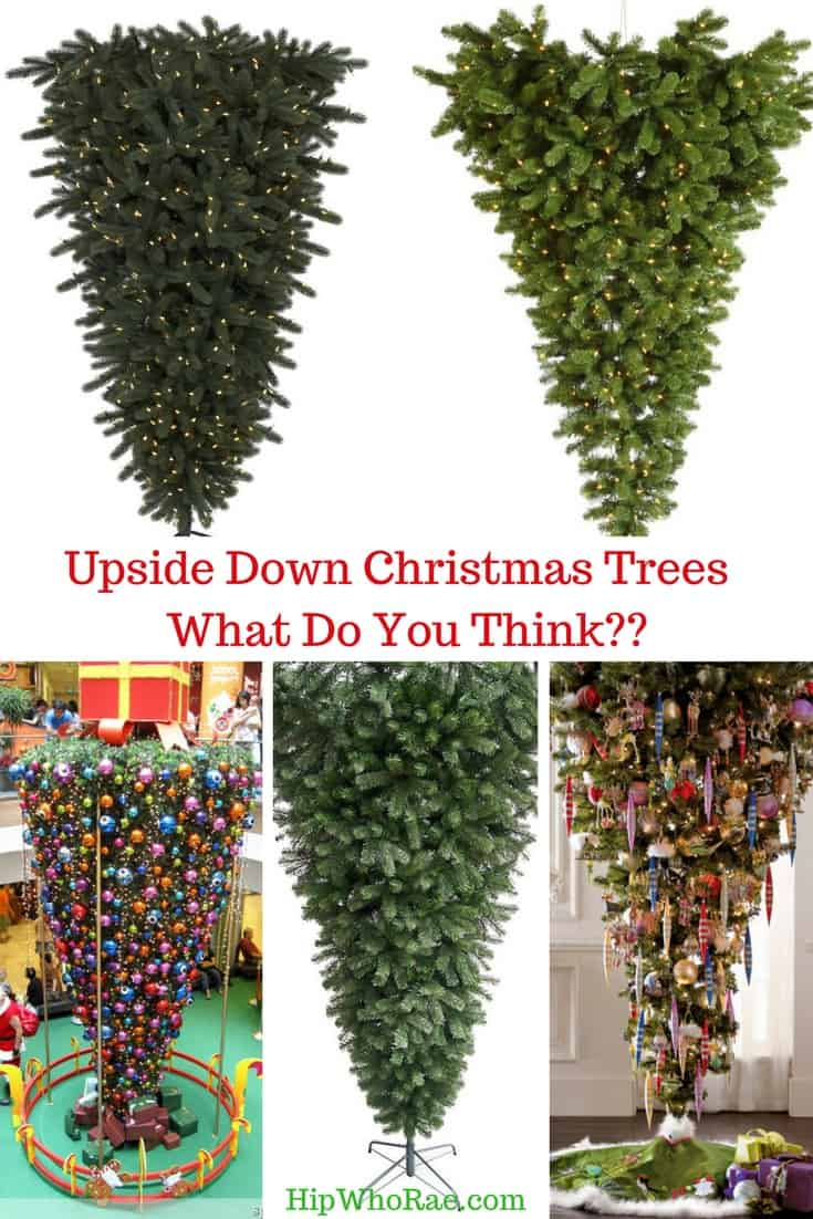 Upside Down Christmas Trees What Do You Think