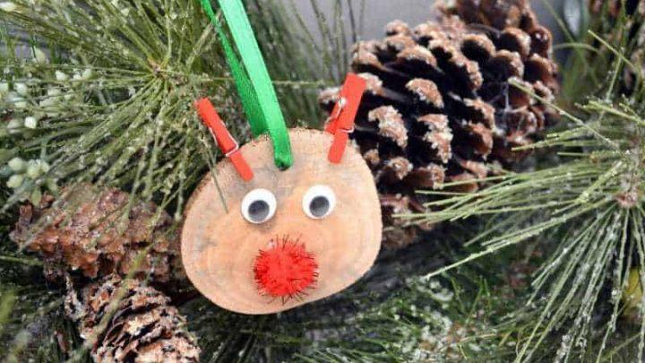 DIY Kid Friendly Christmas Ornaments - Hip Hoo-Rae